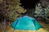 Touristische zelt in einer nacht-wald-lichtung — Stockfoto