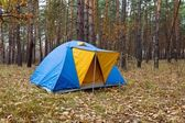 Blue touristic tent in a autumn forest — Stock Photo