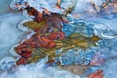 Water rushing in a ice — Stock Photo