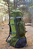 Green touristic backpack in a forest — Stock Photo