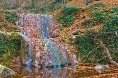 Beautiful waterfall in a mountain canyon — Stock Photo
