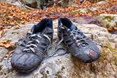 Pair of sport sneakers on a stone — Стоковое фото