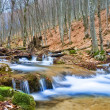 Small river in a mountain canyon — Stock Photo #8009386