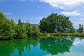 Emerald lake — Stockfoto