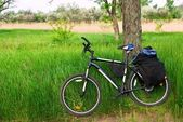 Bicycle in a grass — Stock Photo