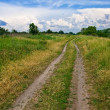 Ground road in a steppe - Photo