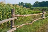 Wooden fence on a rural field — Stock Photo