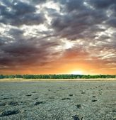 Sunset on a dried-up lake — Stock Photo