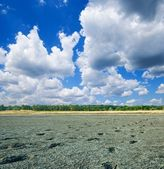 Dried-up lake — Stock Photo