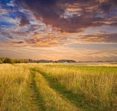 Evening rural landscape road among a fields — Stock Photo