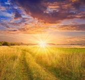 Sunset in a steppe — Stockfoto
