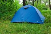 Niebieski namiot turystyczne w lesie — Zdjęcie stockowe