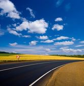 Asphalt road turn among a fields — Stock Photo