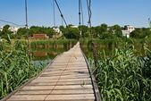 Wooden bridge over a river — Stock Photo