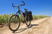 Turistiska cykel på en väg — Stockfoto
