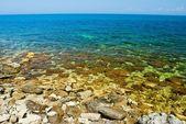 海の海岸 — ストック写真