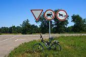 Turistiska cykel under vägmärke — Stockfoto