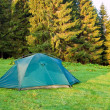 Stock Photo: Green touristic tent on a forest glade at the morning