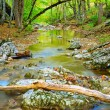 Quiet mountain river — Stock Photo
