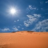 Hot day in a desert — Stock Photo