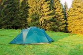 Green touristic tent on a forest glade at the morning — Stock Photo