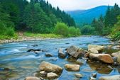Mountain river in a mist — Stock Photo
