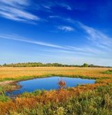 Lake in a autumn steppe — Stock Photo
