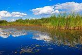 Nuvole riflettono in un lago di estate — Foto Stock