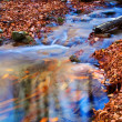Small blue puddle in a autumn forest — Stock Photo #8082480