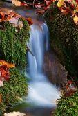 Agua hermosa cascada entre un musgo verde — Foto de Stock