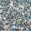 Stock Photo: Varicoloured marine pebbles
