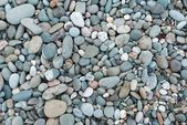 Varicoloured marine pebbles — Stock Photo
