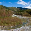 Altai landscape — Stock Photo #8130356