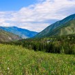 Mountain valley landscape — Stock Photo