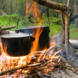 Touristic campfire and two cauldrons - Stock Photo