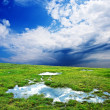 Green meadow with puddles — Stock Photo #8131924