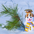 Happy snowman on a fir tree background — Stock Photo #8134199