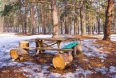 Touristic camp in a spring forest — Stock fotografie