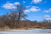 Spring river landscape — Stock Photo