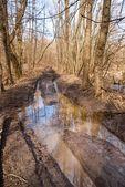 Strada sporca di primavera — Foto Stock