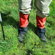 Stock Photo: Feet of hiker in grass background