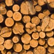 Stock Photo: Woodpile as background