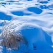 Winter snow background — Stock Photo