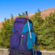 Touristic backpack on forest glade — Stock Photo #8240014