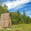 Wooden cabine in a forest - Stock Photo