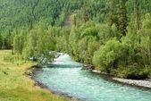 Emerald river — Stock Photo