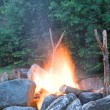 Camp fire — Stock Photo #8251219