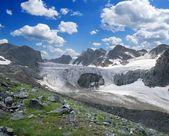 Glacier in the mountains — Stockfoto