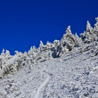 Stock Photo: Snowbound mountain slope