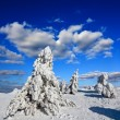 Winter scene — Stock Photo #8518689